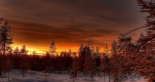 Weihnachtsdorf in Rovaniemi flickr @ninja gecko