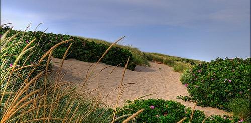 Dänemark Strand Urlaub flickr @ Romtomtom