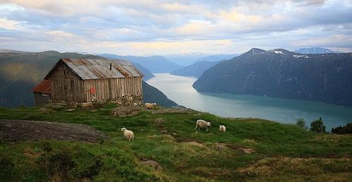 Fjord-Rundreisen Sognefjord flickr (c) Red Junasun