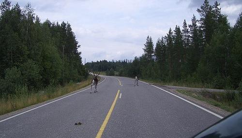 Autofahren in Finnland flickr (c) hage