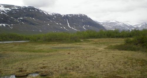 Lappland in Schweden (c) reiseidylle