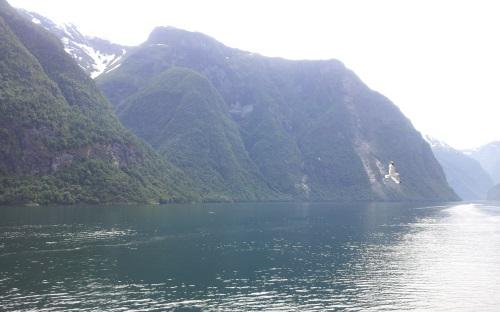 Fjordangeln in Norwegen (c) reiseidylle