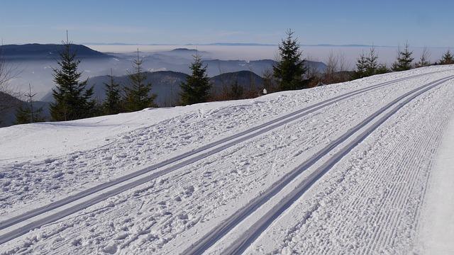 Ski Langlauf in Schweden